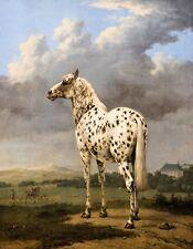 METAL MAGNET Piebald Horse Field Art Painting 1650-1654 Horses MAGNET