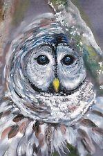 RARE Blue eyes cute owl by Novikova Russian modern postcard