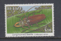 Belize 1995 $10 Long-horned beetle Sc 1046 Mint Never Hinged