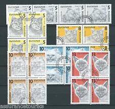 BULGARIE - CHATS 1989 YT 3286 à 3291 blocs de 4 - TIMBRES OBL. / USED