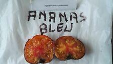 graines de tomate ananas bleu vendu en sachet de 30 graines en procédé bio