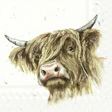 Galloway Cow Bull 4 Napkins 33x33cm Paper Decoupage Table BUY 4 GET 1 FREE