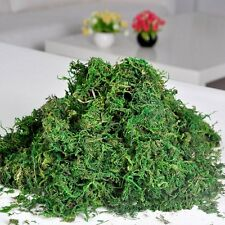 Best Artificial Reindeer Moss Dried Christmas Xmas Fake Decoration Plants Pot