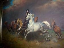 Wildpferde Pferde  Viski Janos Ungarn