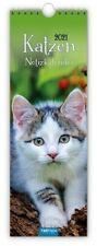 Streifenkalender Katzen 2021