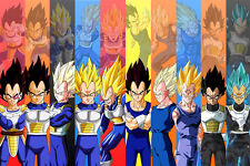 Dragon Ball Poster Vegeta 12in x 18in Free Shipping