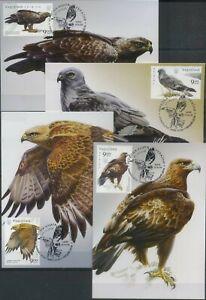 Ukraine 2020 Fauna, Birds of Prey Maxi Cards