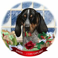 Blue Tick Coonhound Dog Porcelain Ornament Pet Gift Santa I Can Explain!