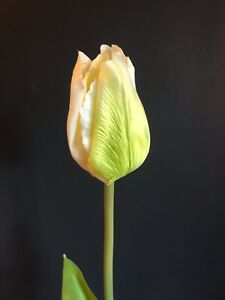 Off White Artificial Tulip, Realistic Cream Ivory Faux Silk Flower Real Touch
