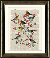 Old Antique Book page Art Print - Birds and Blossoms Dictionary Page Wall Art