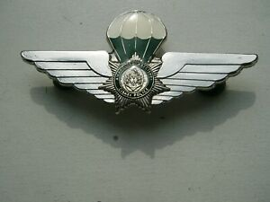 SOUTH AFRICAN POLICE BADGE?