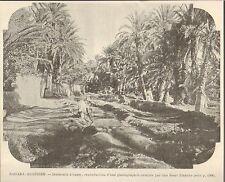Algeria sahara desert interieur oasis image 1901
