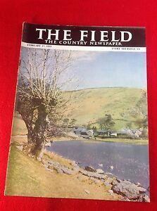 Vintage : THE FIELD magazine : 17 February 1955