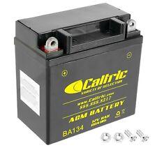 Agm Battery for Suzuki Lt160E Lt160 E Lt-F160 Ltf160 Quadrunner 160 2X4 1989-04