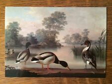 Postcard of painting by MAGNUS von WRIGHT olja pa duk - free USA shipping