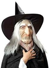 Sad Expression Witch Mask With Hat & Hair Halloween Old Woman Fancy Dress