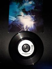 """MANN Riders On The Storm 7"""" VINYL UK A&M 1991 Featuring Ceremony Mix"""