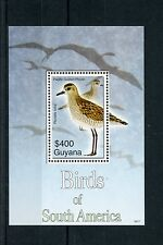 Guyana 2006 MNH Birds of South America 1v S/S II Golden Plover Waders Stamps