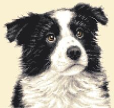 BORDER COLLIE PUPPY, dog  - full counted cross stitch kit