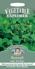 Mr Fothergills - Vegetable - Broccoli  - Raab 60 Days - 500 Seeds