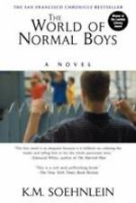 The World of Normal Boys by K. M. Soehnlein (2001, Paperback)