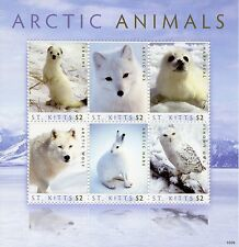 St Kitts 2010 MNH Arctic Animals 6v M/S Birds Owls Fox Seal Hare Wolf Stamps