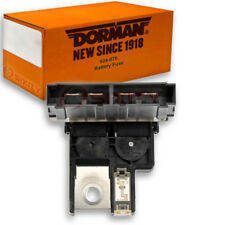 Dorman OE Solutions 924-078 Battery Fuse for 2438079912 -  kc