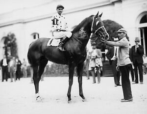 Gallant Fox - 1930 Triple Crown Winner, 8x10 Photo