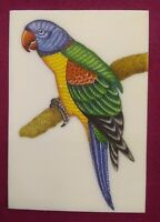 Hand Painted Parrot Art Fine Birds Miniature Painting India Art Synthetic Ivory