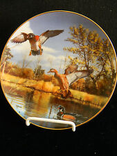 Settling In by David Maass- On the Wing Collection- Danbury Mint 1989- Plate