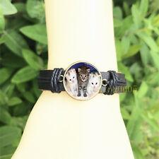 Glass Cabochon Leather Charm Bracelet Three Kittens Black Bangle 20 mm