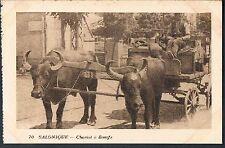 FRENCH POSTCARD Thessaloniki A Bullock Cart c1915 - perf