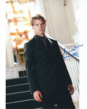 DANIEL GILLIES THE ORIGINALS AUTOGRAPHED PHOTO SIGNED 8X10 #1 ELIJAH MIKAELSON