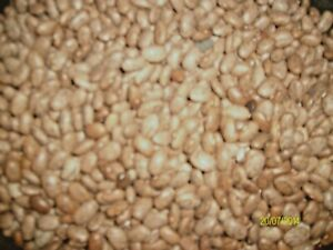 Pre-Washed Pinto Beans Kettle Ready