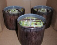 BATH & AND BODY WORKS WHITE BARN 3 WICK CANDLES ~ WOODLAND FOREST X3 BRAND NEW