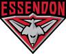 Sticker - Trading Card Sticker - AFL Essendon Bombers
