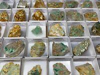 LOTE 35 VARISCITA EN CAJITA - Lot 35 Variscite boxes - Zamora - SPAIN MINERAL