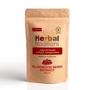 Herbal Traditions Blushwood Beere EBC46 - 30 Kapseln