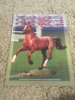 REEVES INTERNATIONAL BREYER HORSE TOY CATALOGUE YEAR 2003 Mid Year Seabiscuit