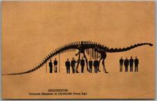 "1940s Colorado Museum Of Natural History Postcard ""Diplodocus"" Dinosaur Linen"