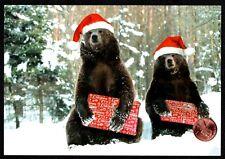 Christmas Card Grizzly Bears Gifts Santa Hats Snow - Christmas Greeting Card New