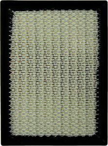 Air Filter-Original Performance WD Express 090 10004 501