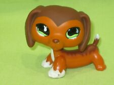 Authentic Littlest Pet Shop #675 Savvy Savannah DACHSHUND DOG Green Wavy Eyes