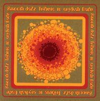 Erykah Badu Smooth Jazz Tribute (CD Used Very Good)
