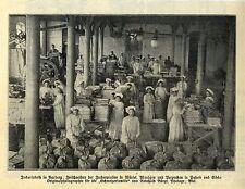 Operaie della fabbrica di zucchero in AARBERG (Svizzera) registrazione storica 1909
