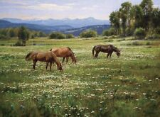 """""""Amid Summer Blooms"""" Robert Peters Limited Edition 30"""" Giclee Canvas"""
