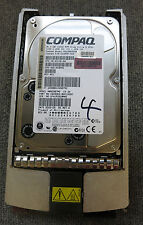 "Compaq BD0366459B 36.4GB 3.5"" 10000 RPM Wide Ultra3 SCSI Hard Drive 177986-001"