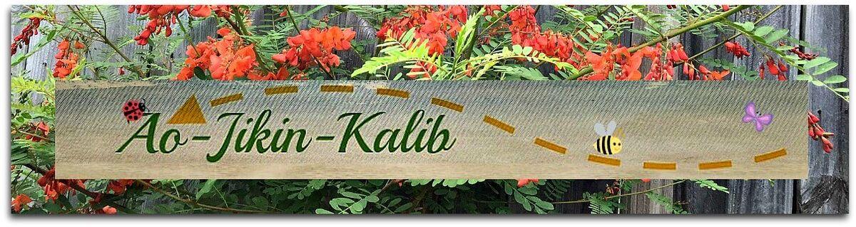 ao-jikin-kalib