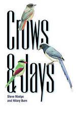 Crows and Jays by Steve Madge, Hilary Burn (Paperback, 2001) ORNITHOLOGH~BIRDS!