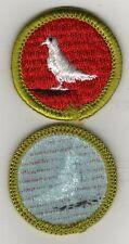 Pigeon Raising Merit Badge Type H, Blue Back Version (1972 - 1980), Mint!